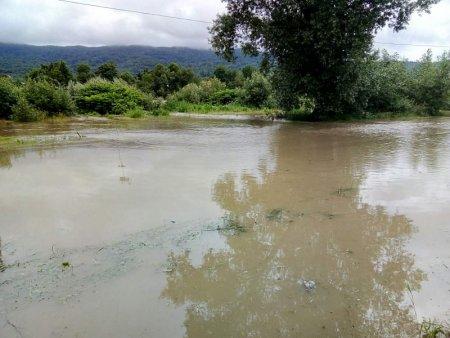 В селі на Рахівщині вода підтопила автосервіс та городи (ФОТО, ВІДЕО)